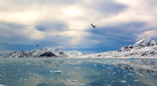 Wings Over the Arctic~ Melting ice in the Hight Arctic ~ © Lynne Simons Photography